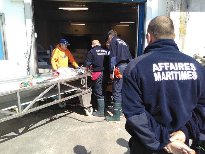 En France par exemple, plusieurs administrations s'avèrent compétentes dans le domaine de la pêche : la Marine nationale, les Affaires maritimes, la gendarmerie maritime, les douanes.