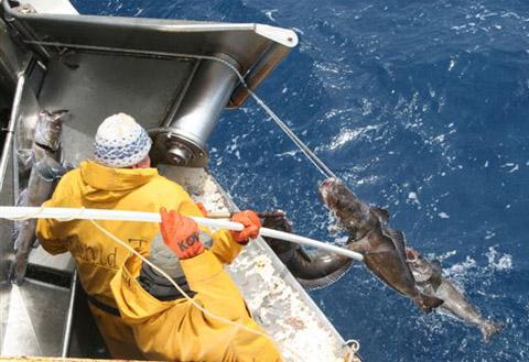 Pêche à la légine