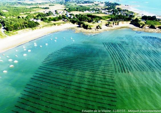 Les lundis de la mer – La qualité des eaux littorales du Morbihan