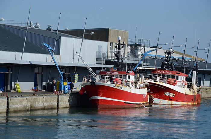 Quelles mesures pour la conservation des ressources halieutiques ?