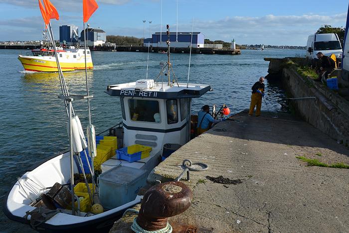 Les quotas de pêche, comment ça marche ?