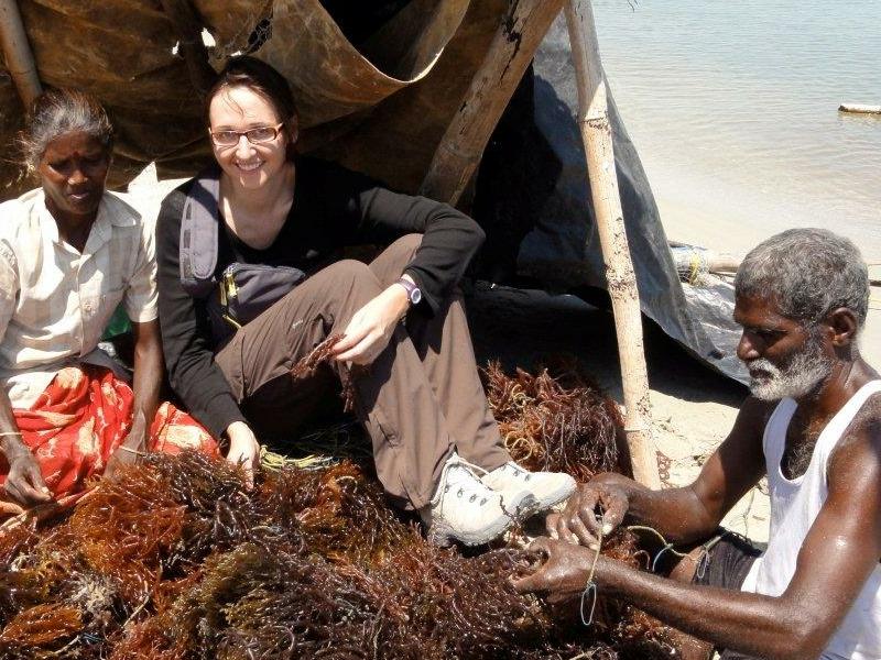Les lundis de la mer – Un tour du monde de l'innovation sur les algues