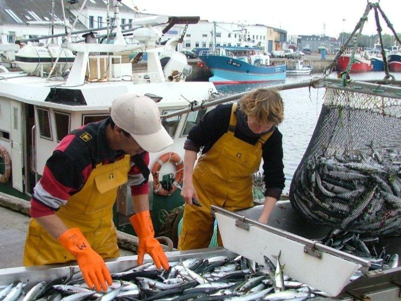 Les lundis de la mer – Produits de la mer frais : du bateau à l'assiette, quelles innovations ?