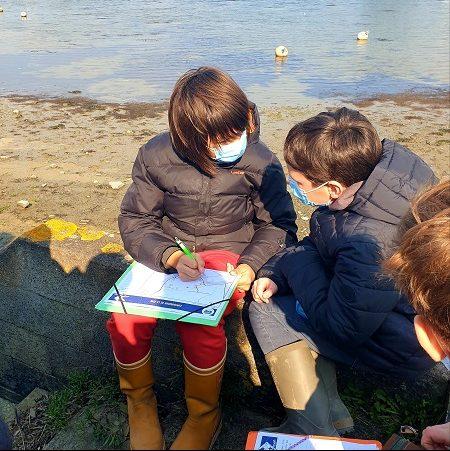 Cartographie de la zone littorale choisie par les élèves